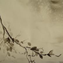 galerie-plantes-et-fleurs